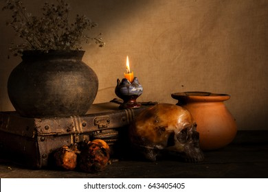 Human skull and flower vase old treasure on wooden table background, Still life concept