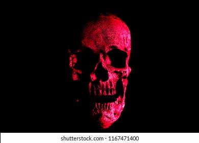 Human Skull. Halloween Human Skull. Evil Skeleton. Red Death Skull.
