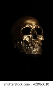 Human Skull. Halloween Skull. Spooky Halloween Skull isolated on black.  Dark image of a human skull hiding in the shadows ready to attack at any moment.