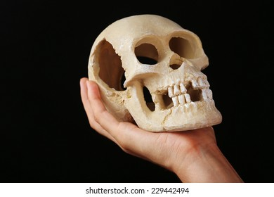 Human skull in hand on dark background