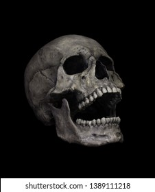 Human Skull Isolated on black