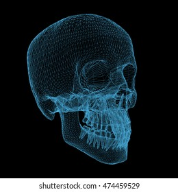 human skull isolated on black background, 3d render