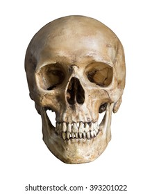 Human skull, isolated on white background with clipping path