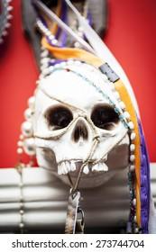 Human skull mounted on frame