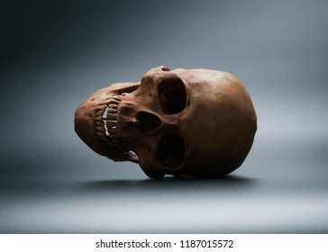 Human skull on black background with copy space.