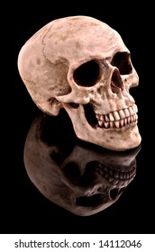 Human skull on black background with reflection.