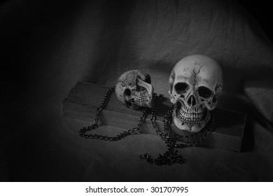 Human skull on dark background ; still-life
