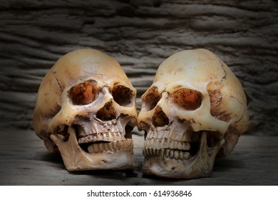 Human human skull on old beautiful wooden background.  Still life and dim light image.