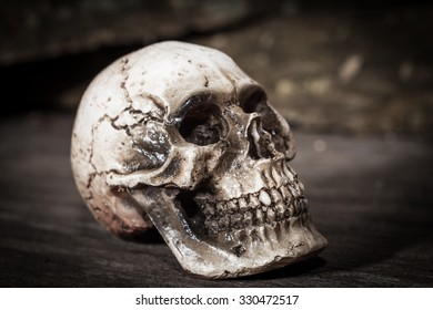 Human skull on wood background.