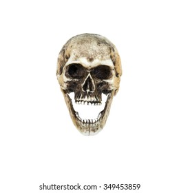 Human skull  open the mouth (front) . Isolated on white background with clipping path