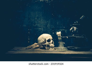 Human skull and science