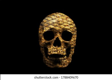 Human skull with texture of fish scales isolated on black background.