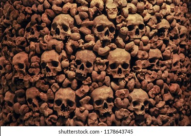 human skulls and bones as a background