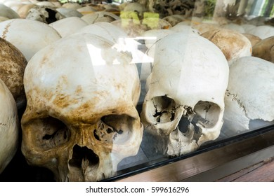 Human skulls and bones. Human body and anatomy concept. Background pattern and  texture concept.