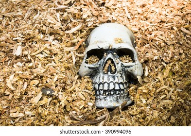 human skulls die and graved underground ideal for halloween and other art purposes