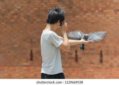 Bird Taking Food Images, Stock Photos & Vectors | Shutterstock