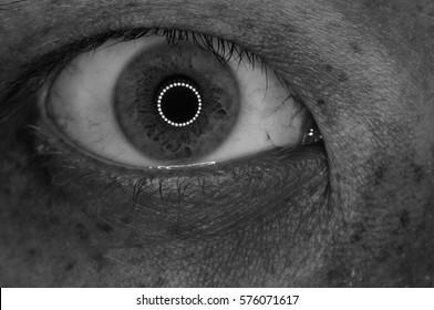 Human wild extreme close-up eye in detail