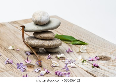 Human-like figure made of stone pebbles on a wooden board. Rusty metal nail. Small lilac flowers of white and purple color and two green leaves around the figure. Isolated on white background.