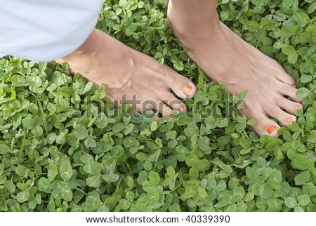 Human's bare foot on clover meadow
