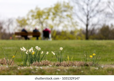 Humans and nature enjoy the early spring sun