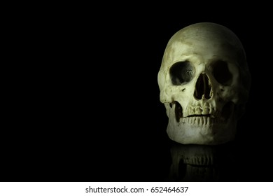 humanskull on black background