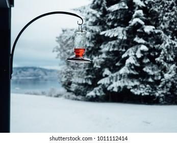 Hummingbird feeder hanging in snowy winter