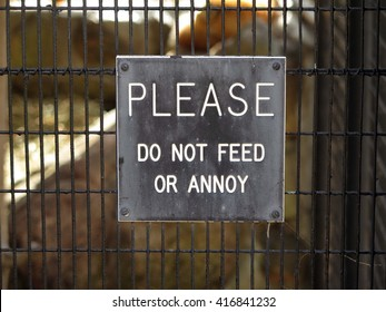 Humorous sign that says Please Do Not Feed or Annoy