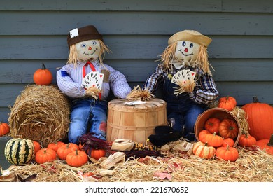Humorous Thanksgiving picture with Scarecrows playing poker while not guarding the harvest and Crow (black bird) uses the moment and eats the corn (maize)