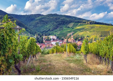 Hunawihr wine village in the middle of vineyards in Alsace region, France