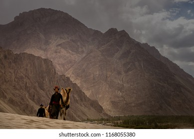 Hunder, Ladakh / India - July 11 2018: Nomad leads camel through Desert