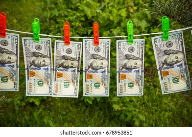 Hundred dollar bills hang and dry on a rope against the background of green bushes in the garden. The concept of criminal money laundering.