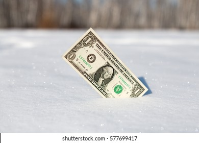 hundred dollars stuck in the white snow close-up