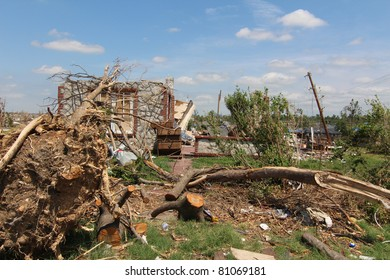 Hundreds of mature trees torn out of the ground only added to the already extensive damage caused by EF-5 tornadoes in the Midwest and the South as they fell onto homes they had once shaded.