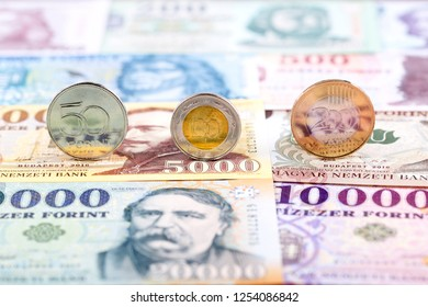 Hungarian Forint coins on the background of banknotes