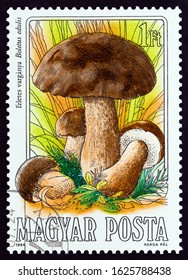 """HUNGARY - CIRCA 1984: A stamp printed in Hungary from the """"Mushrooms"""" issue shows Boletus edulis, circa 1984."""