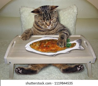 The hungry cat eats fried fish on the bed.