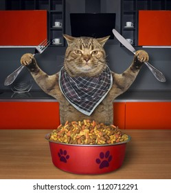 The hungry cat with a knife and a fork eats dry feed in the kitchen.