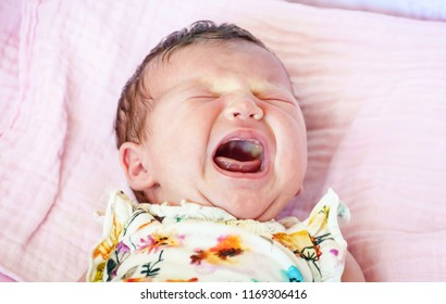 Hungry Caucasian newborn infant baby girl crying hard asking for mother's milk. Crying baby stock image. Open mouth. Stomach cramps, baby colic treatment, infant griping pain, intestinal gas symptoms.
