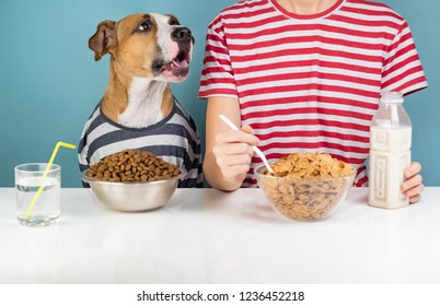 Hungry dog and human having breakfast together. Minimalistic illustrative concept of dog with a person in front of pet food and cereals bowls