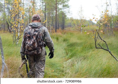 hunter in camouflage with shotgun walking on the swamp