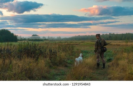 Hunter dog. Hunting landscape with a hunter and a dog. English setter. On autumn hunting with the English setter. Hunting for a woodcock with an  October. Russia. Photos of real hunting.