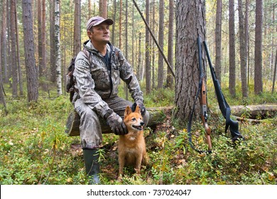 hunter with dogs finnish spitz resting during the hunt