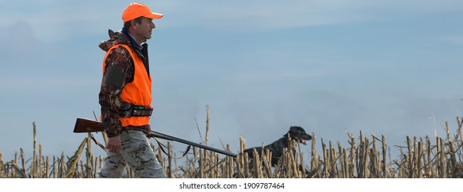 A hunter with a gun in his hands in hunting clothes in the autumn forest in search of a trophy. A man stands with weapons and hunting dogs tracking down the game.