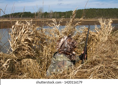 hunter hiding in a blind of reeds waiting for ducks on the lake