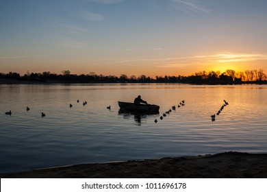 Hunter in row boat setting waterfowl decoys at dawn, Chesapeake Bay, Maryland, USA.