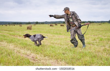 the hunter sends the hunting dog to look for game with a hand gesture in a mown meadow