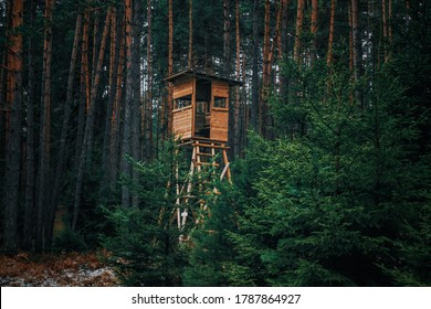 Hunters' booth at the edge of the forest and in the forest