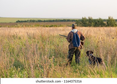Hunters with a german drathaar and spaniel, pigeon hunting with dogs