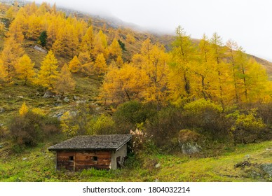 Hunter's outpost in the mountains in fall