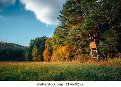 Hunting cabine in orange autumn nature, warm sunset light